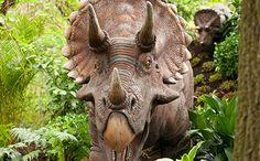 Dinosaur Safari / nycgo.com