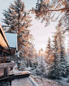 Winter and Christmas aesthetic Winter Szenen, Winter Love, Winter Magic, Winter Christmas, Christmas Time, Winter Travel, Snow Travel, Cabin Christmas, Hello Winter