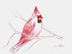 cardinal bird art pencil drawing on fat paper by paintingcanvas, $28.00