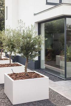 17 moderne tuin ideeën 17 moderne tuin ideeën The post 17 moderne tuin ideeën appeared first on Garten. Unique Garden, Modern Garden Design, Landscape Design, Modern Landscaping, Backyard Landscaping, Landscaping Ideas, Back Gardens, Outdoor Gardens, Modern Gardens