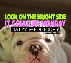Look on the bright side it could be Monday. Happy Wednesday | Wednesday Graphics Pics Images Quotes Happy Hump Day Greetings - more at commentwarehouse.com