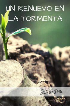 Renovado en Dios, Poesía Cristiana Poet, Christians, Dios