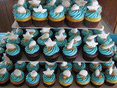 All Pictures of Seashells | Sand and Seashells Cupcakes