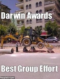 darwin awards: best group effort
