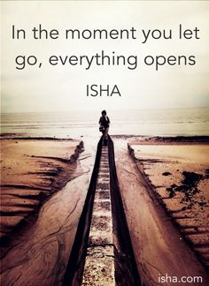 In the moment you let go, everything opens. Isha Judd. Quotes