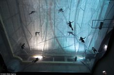 Transparent bouncy art installation for adults, Italy - http://www.dailymail.co.uk/news/article-2228609/Artist-Tomas-Saraceno-creates-living-adult-playground-Milans-HangarBicocca.html