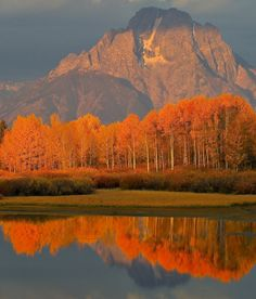 Mountain and lake in autumn [Jackson Hole, Wyoming]