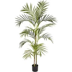 Nearly Natural 4' Areca Palm Silk Tree ($80) ❤ liked on Polyvore featuring home, home decor, floral decor, flowers, plants, flower stem, tree pots, blossom tree, fake trees and artificial trees