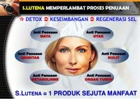 yasmin af   Rakuten: Super Lutena eceran / 10 softgel Beli Super Lutena, S. Lutena, Naturally Plus, obat diabetes, obat kanker, obat mata Super Lutena eceran / 10 softgel: 0019267 dari yasmin af   Rakuten Belanja Online - Indonesia