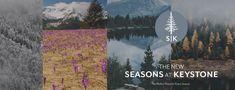 New Condo, Super Excited, Condos, Colorado, Campaign, Product Launch, Content, Seasons, Shit Happens