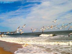 Ocean City...MD