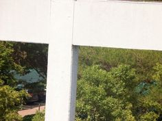 Bee removal in Johannesburg , removed bees in the roof at Netcare Linksfield Hospital , 24 12th avenue
