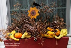 Fall Window Box http://ourfairfieldhomeandgarden.com/our-fairfield-home-garden-welcomes-fall/