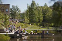 Umeå University ranked among world's best young universities - Umeå University, Sweden