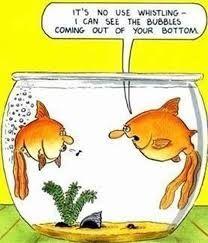 OMG too funny!
