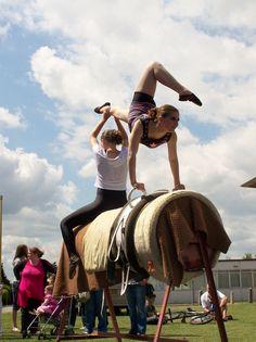 equestrian vaulting | Lincolnshire Equestrian Vaulting Team
