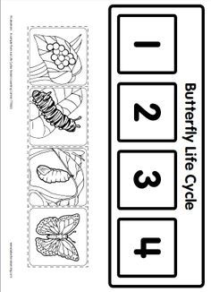 Life Cycle Learning Game from Lakeshore Learning: Children learn all about the life cycle of a butterfly! by dana Life Cycle Learning Game from Lakeshore Learning: Children learn all about the life cycle of a butterfly! by dana Kindergarten Science, Science Classroom, Science Activities, Sequencing Activities, Sequencing Events, Lakeshore Learning, Butterfly Life Cycle, Stages Of A Butterfly, Very Hungry Caterpillar