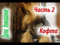 Кофта для собаки своими руками.Часть 1.Уроки вязания на канале ''Дела домашние''. - YouTube