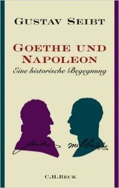 I very much doubt that Seibt tries a guess about which incoherence Napoleon had pointed out in the Werther to an approving Goethe. I have not only a guess, but a good one.