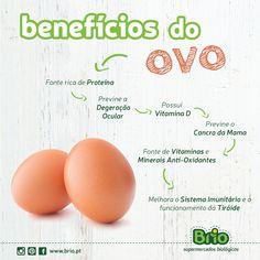 Brio Supermercados Biológicos - beneficios do ovo