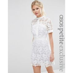 ASOS PETITE Lace Skater Dress with Contrast Lining ($96) ❤ liked on Polyvore featuring dresses, petite, white, white lace dress, short lace dress, floral dresses, lace mini dress and lace fit and flare dress
