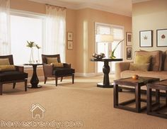 333 Best Carpet Cleaning Images Cleaning Hacks Carpet Cleaning