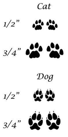 cat and dog paw tattoo - Google Search