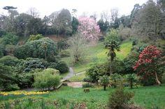 Trebah Garden in Cornwall