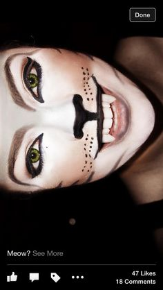My Halloween Cat Makeup :)