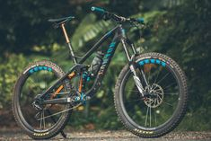 Long-Term Test: One Year Of Shredding, The Canyon Strive CF Race – Flow Mountain Bike