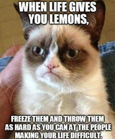 When life gives you lemons - Grumpy Cat