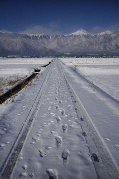 通勤路の景色 R-D1+Biogon 25mm - 安曇野の遊び人の日記 Nagano