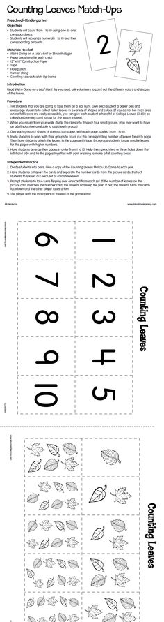 Counting Leaves Match-Ups Lesson Plan from Lakeshore Learning: Kids will love going on a leaf hunt to practice counting in a whole new way!