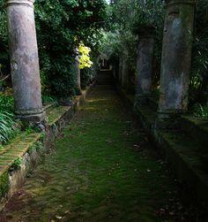 allthingseurope:    Old garden- Capri, Italy (by Gregor Samsa)