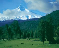 paisajes chile | Paisajes Heterogéneos. Ruta de los Volcanes en Chile: Fuente: Chile ...