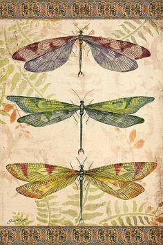 Resultado de imagem para ramos de lotus e libelulas imagens
