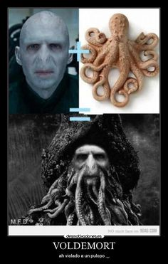 A joke about Harry Potter and Pirates? oh yes A joke about Harry Potter and Pirates? Harry Potter Tumblr, Images Harry Potter, Harry Potter Puns, Harry Potter World, Fans D'harry Potter, Crazy Funny Memes, Hilarious Jokes, Funny Quotes, Mom Jokes