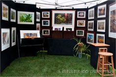 """[b]OK, I just bought used pro panels and an EZ up canopy. This is what I assembled in my backyard today. I need to send photos of a booth to the shows I hope to enter to see if I can get juried in. What do you think? I just went through the house and brought out images I have on my walls. It is heavy of the """"trees"""" theme since I recently did a coffee shop show on trees, but I will have so much more to share if I get accepted. Then I will get to work on inventory. It was fun putting this a"""
