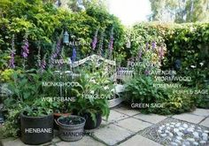 Herbal Gardening Ideas container gardening magical herbs - THE ART OF WORTCUNNING (Well a few basics anyway) Several well stocked shelves packed with dried herbs, bottles of herb extracts, tintures and salves will pay dividends in your magical workings … Witchy Garden, Gothic Garden, Moon Garden, Dream Garden, Sarah's Garden, Hillside Garden, Garden Walls, Porch Garden, Garden Living
