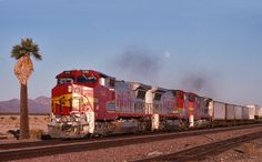 https://flic.kr/p/dpPzme | Pride of the Railroad | ATSF Warbonnets 546,561 and 501 rolling west through the Mojave passing the palm tree at Siberia, CA. Magic!! 28 September 1993. LF090ar