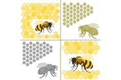 Bee and honeycomb by Sunshine Art Shop on @creativemarket