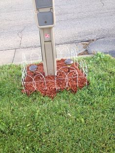 Our mailbox - Spring 2015 - Carrollton Ohio