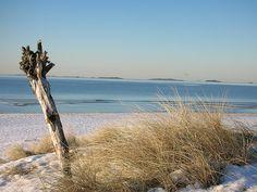 Sola beach in winter