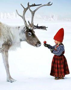 Little girl ornament reindeer gift  Toni Kami Joyeux Noël #Christmas #winter photography breiehagen.com