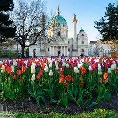 Der Liebe Augustin, Kirchen, Austria, Taj Mahal, Castle, Building, Travel, Pictures, Vienna