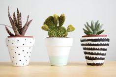 DIY Creative Ways to Decorate Flower Pots - Cactus Succulent Pots, Cacti And Succulents, Potted Plants, Indoor Plants, Succulent Ideas, Indoor Flower Pots, Fake Plants, Decorated Flower Pots, Painted Flower Pots