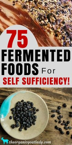 Are you looking for the best fermented foods to make? This is the ultimate list of fermented foods recipes and resources! Fermentation Recipes, Canning Recipes, Beer Recipes, Kefir, Kombucha, Foil Pack Meals, Probiotic Foods, Survival Food, Homestead Survival