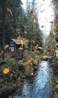 What a pretty time of the year. Cozy Cabin, Cozy Cottage, Future House, Nature Landscape, Forest Cabin, Cabins And Cottages, Log Cabins, Cabins In The Woods, Log Homes