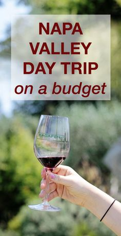 Tips for an amazing day in Napa Valley that doesn't break the bank. We went to 3 wineries and had lunch on a  budget and it was so much fun! You can really visit Napa Valley without spending loads of money. I have winery tips and my best secret - a wine pass that gets you discounts to wine!!!!!