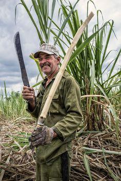 "In Cuba, the men who cut sugar cane, known as the ""macheteros"" to be a machete or mocha, their work tool."